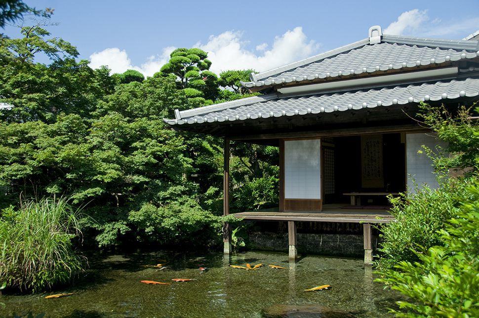 【イベント共催】湧水を利用して造られた住宅庭園。明治時代に建てられた古民家でお茶会をしてみませんか。 の写真
